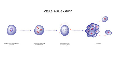 cell malignancy process