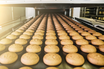 Cakes on automatic conveyor belt or line, process of baking in confectionery factory. Food industry, cookie production