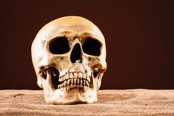 Human skull in hell