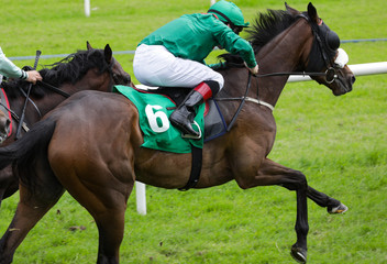 close up on sprinting race horse and jockey