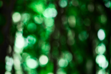 Abstract green background with bokeh, photo