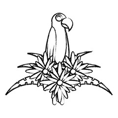 macaw bird and decorative flowers over white background, vector illustration