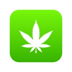Cannabis leaf icon digital green for any design isolated on white vector illustration