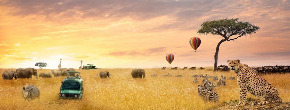 African Safari Scene Web Banner