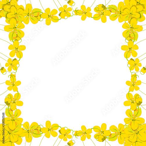 Yellow Cassia Fistula Golden Shower Flower Border Stockfotos Und