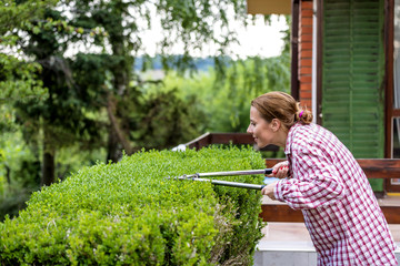 Maintenance of the Garden.Attractive Woman In Plaid Shirt Is Pruning Hedges In Garden With Shears