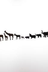 動物たちの行進