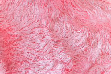 Close up pink fur texture or carpet for background