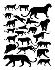 Silhouette of panther. Good use for symbol, logo, web icon, mascot, sign, or any design you want.