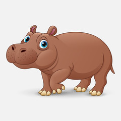 Cute hippo cartoon isolated on white background