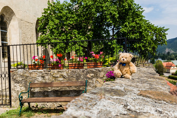 Teddy bear Dranik in Weissenkirchen. Austria.