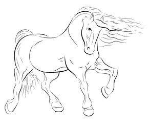 horse with waving mane