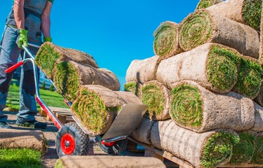 Landscaper Grass Instalation