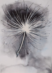 Fashionable illustration of a watercolor painting of a dandelion seed flying