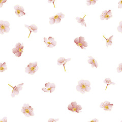 Vector botanical seamless pattern with forget-me-not flowers. Modern floral pattern for textile, wallpaper, print, gift wrap, greeting or wedding background. Spring or summer design.
