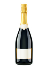 Champagne. Wine bottle. French traditional drink. Isolated white
