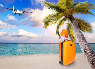 Bright orange suitcase and hat on the sandy beach by the sea under an inclined palm tree and the plane in the sky with clouds