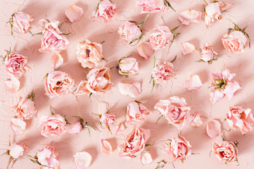 Tender pattern of dried pink roses on the textured background