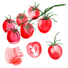 Set tomatoes drawn background