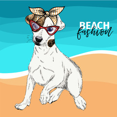 Vector portrait of Jack Russel terrier dog wearing sunglasses, retro bandana. Summer fashion illustration. Vacation, sea, beach, ocean. Hand drawn pet portait. Poster, holiday, postcard, summertime.