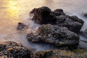 surreal rock with sea shell and smooth long exposure