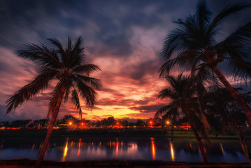 Wall Mural - Silhouette coconut palm trees near the river at sunset. Vintage tone.