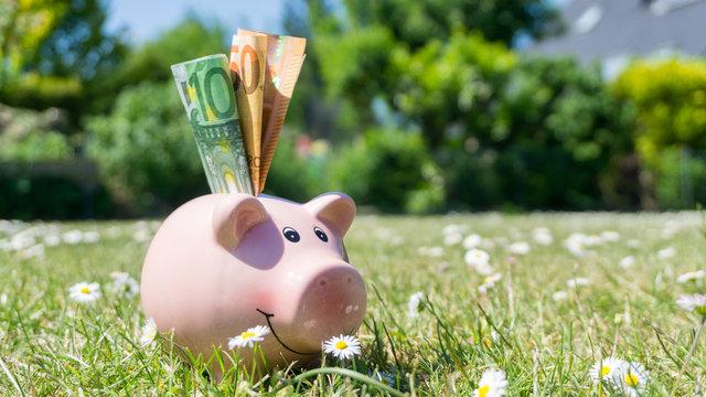 pinkes Sparschein mit Euro Geldscheinen im Garten bei schönem Wetter