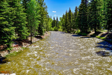 River in Colorado Surrounded by Mountains and Trees