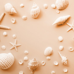 Top view of seashell set with copy space on color background..Summer, holiday,travel concept