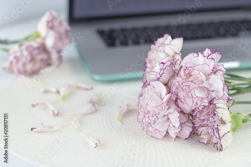 White angel on desk beautiful pink flowers on white desk stock white angel on desk beautiful pink flowers on white desk mightylinksfo