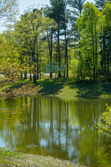 On Golden Pond at Park in Kentucky and Reflection of Trees in the Water