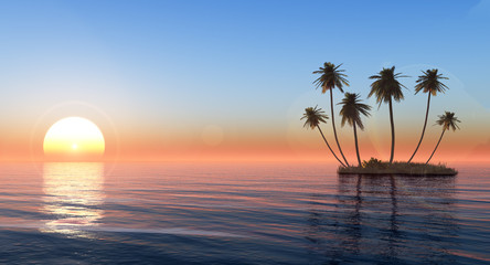palms on the island against the sunset