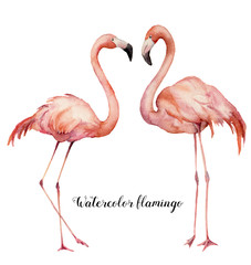 Watercolor two flirting flamingos set. Hand painted bright exotic birds isolated on white background. Wild life illustration for design, print, fabric or background.