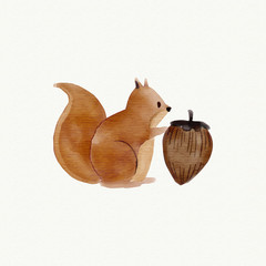 squirrel icon vector