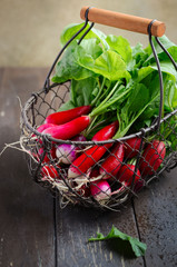 Bunch of fresh colorful radishes on old rustic wooden table, selective focus.