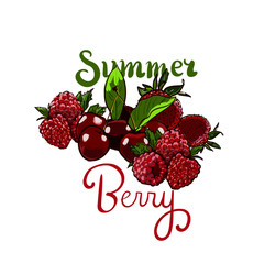 Hand drawn vector set Letterig summer berry colorful marker illustration. Berries engraving doodle sketch etch line. Raspberry, strawberry, cherry on white background. Dessert farm natural product.