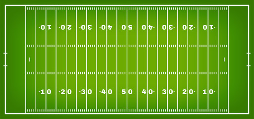 American football field with marking. Football field in top view with white markup Wall mural