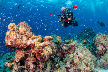 Female SCUBA diver with a large camera photographing a tropical coral reef