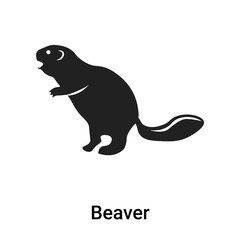 Beaver icon vector sign and symbol isolated on white background, Beaver logo concept