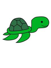 klein junges baby unterwasser schwimmen tauchen meer comic cartoon schildkröte panzer lustig süß niedlich design cool clipart
