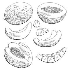 Melon fruit graphic black white isolated set sketch illustration vector