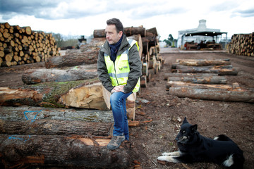 David Chavot, head of the Margaritelli Fontaines sawmill in Burgundy, poses near chopped oak trunks cut for the Chinese market at Fontaines