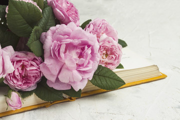 Opened book and roses on a light stone background. Concept books about love and romantic novels