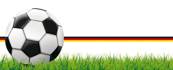 Fußball Deutschland Rasen