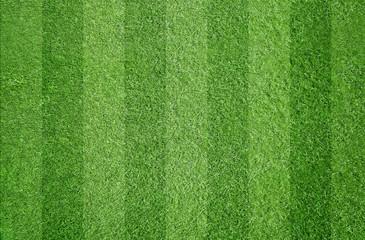 Fußball / Sport / Rasen
