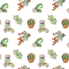 Seamless pattern with cactus, succulents and floral elements on white background. Vintage watercolor botanical illustration for textile, print, invitation, party. Tropical concept.