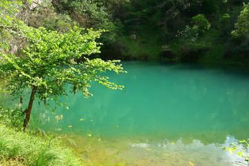une source à Beaulieu en Ardèche