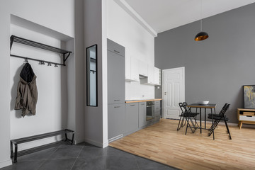 Modern apartment with kitchenette