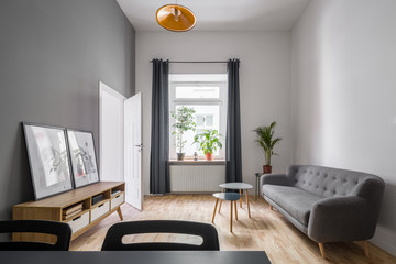Gray couch and wooden cabinet