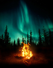Aluminium Prints Northern lights A warm and cosy campfire in the wilderness with forest trees silhouetted in the background and the stars and Northern Lights (Aurora Borealis) lighting up the night sky. Photo composite.